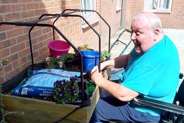 dc gardening